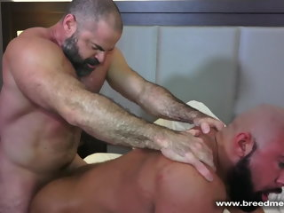 daddy Muscle Daddy Bears Gay Sex muscle